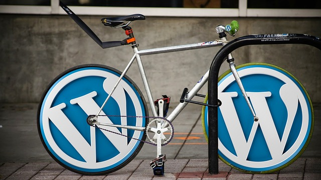 WordPress Logo Bike